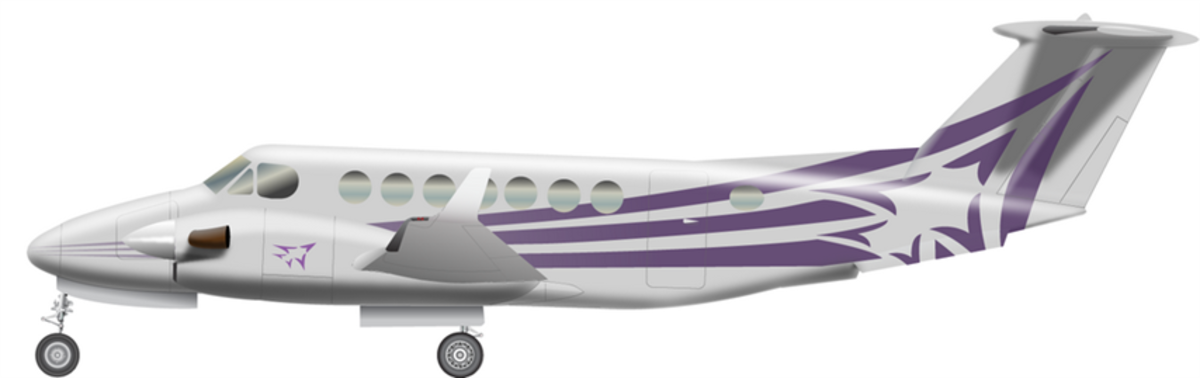 Large beech350i side