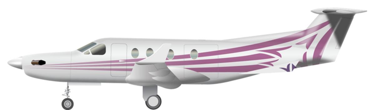 Large 20049 001 esv